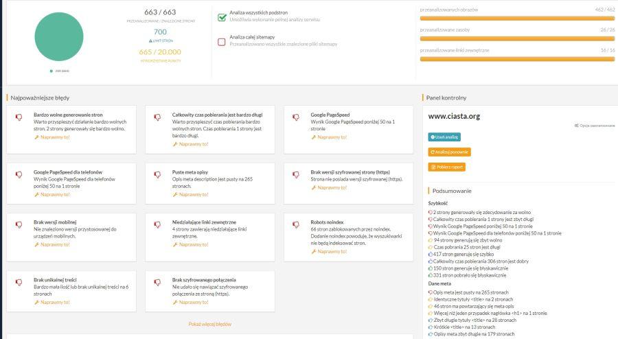 ekran gotowej analizy strony